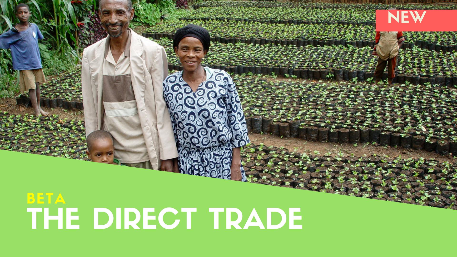 Direct Trade Coffee - Coffee Courses